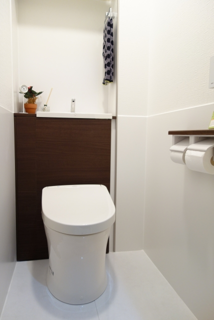 【トイレ掃除】トイレの汚れは臭いの元!?換気扇、壁、床、便器、排水管の汚れを落とし臭わないトイレにする方法